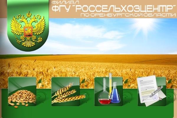Сайт сельскохозяйственной тематики